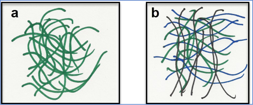 "Diagram ""a"" shows (green) PET chains with no orientation, as they are in a preform. Diagram ""b"" shows some (black) chains oriented axially and some (blue) chains oriented radially after biaxial stretching as in the blow molding process"